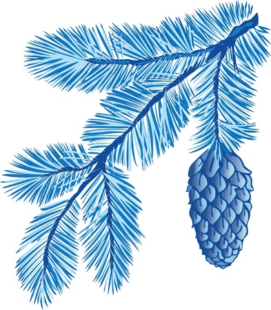 pine decoration: blue branch of fir-tree with cone  Illustration