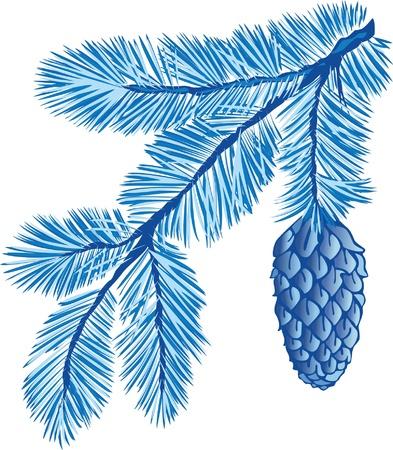 pomme de pin: branche bleue de sapin avec c�ne Illustration