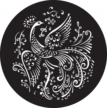 birds silhouette: Decorative magic bird in black circle