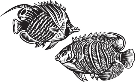 fish silhouette: black fish Illustration