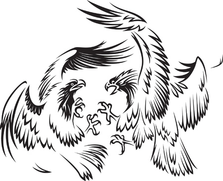 predatory: Fighting birds