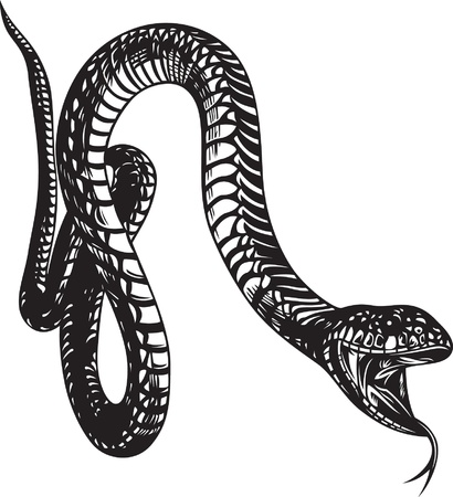 serpent noir: Grand serpent avec la bouche ouverte, le style noir et blanc Illustration