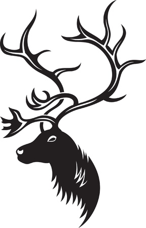 Head of deer with big antler, black and white style