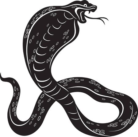 illustration of a Cobra snake, black and white style Vector