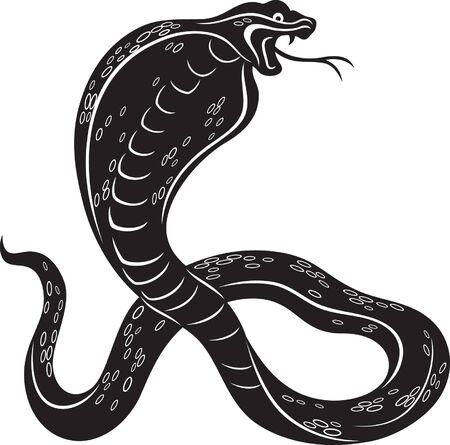 illustration of a Cobra snake, black and white style