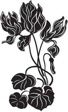 cyclamen: Blooming decorative flowers, black and white style