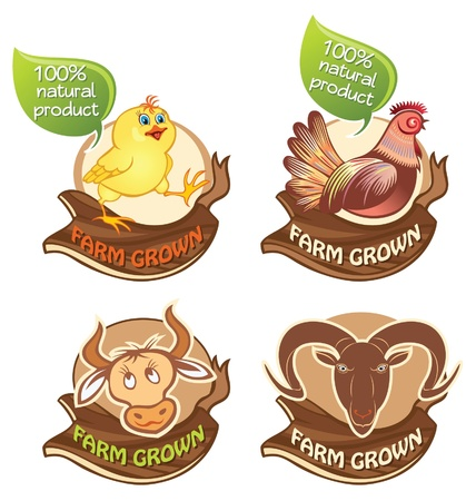 Set of farm domestic animal banners Vector