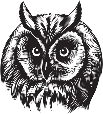 Owl bird head, black and white style  Illustration