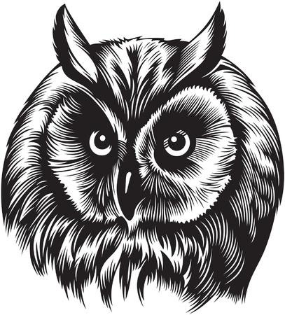 Owl Vogel Kopf, schwarz und weiß Stil Illustration