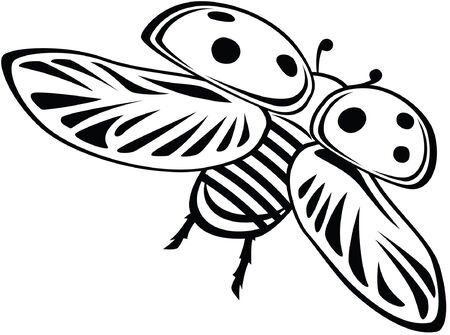 catroon: Ladybug, vector catroon illustration, black and white style