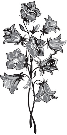 black and white image: bunch of bell flower, black and white style