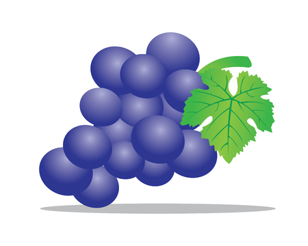 vitis: A grape is a fruiting berry of the deciduous woody vines of the botanical genus Vitis