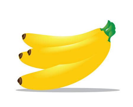 genus: The banana is an edible fruit, botanically a berry, produced by several kinds of large herbaceous flowering plants in the genus Musa.In some countries, bananas used for cooking may be called plantains Illustration