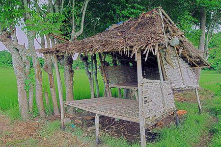 traditional: Traditional Farm