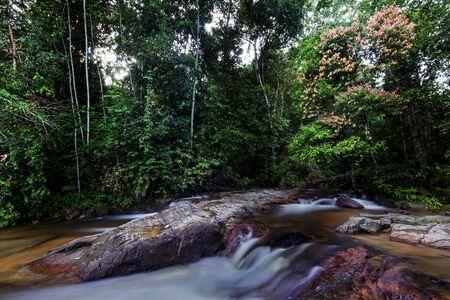 scenary: Beautiful scenary of Ulu Paip waterfall