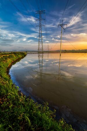 The reflection of voltage tower during golden sunrise with the curve shape lead line of the grass in Kubang Semang, Pulau Pinang