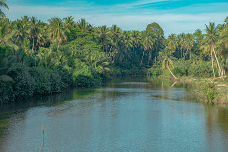 The Sungai Badang River bounds by thick vegetation of mainly coconut trees on it's banks in the outskirt of the city of Kota Bharu in Kelantan, Malaysia. Reklamní fotografie
