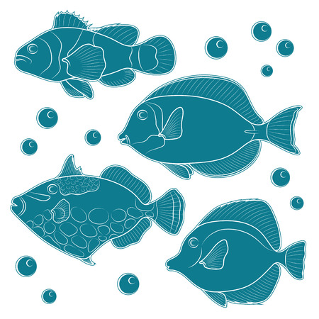 reef fish: Collection of tropical reef fish. Vector illustration