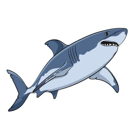 tiburon caricatura: Dibujo vectorial de un gran tibur�n blanco. objetos aislados sobre un fondo blanco.