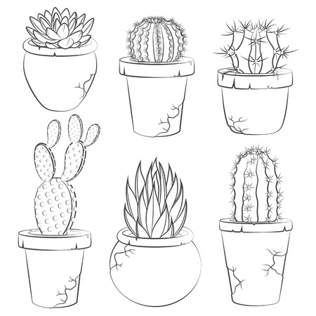 cactus flower: Collection of vector cactuses in flower pot. Isolated objects. Illustration
