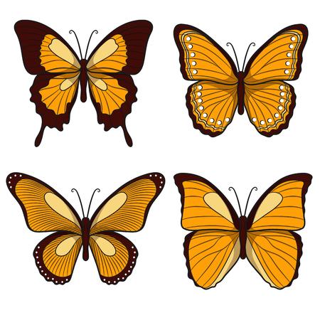 mariposas amarillas: Conjunto de mariposas amarillas. objetos aislados sobre un fondo blanco