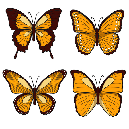 yellow butterflies: Set of yellow butterflies. Isolated objects on a white background
