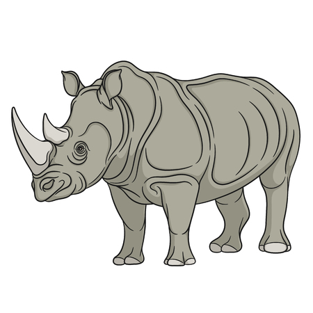 armoured: color illustration rhinoceros. Isolated object on a white background.