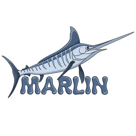 Colored illustration of a marlin fish and an inscription. Isolated vector objects on white background. Illustration
