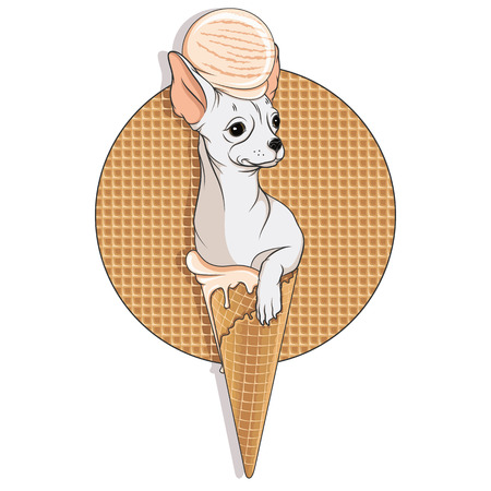 Illustration of a Chihuahua dog in a waffle cup with ice cream on his head. Vector colored isolated object on white background. Ilustração