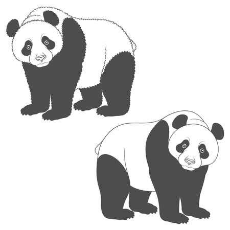 Black and white image of panda. Isolated vector objects on white background.