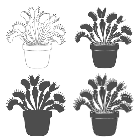 Set of black and white images of venus flytrap. Isolated vector objects on white background.