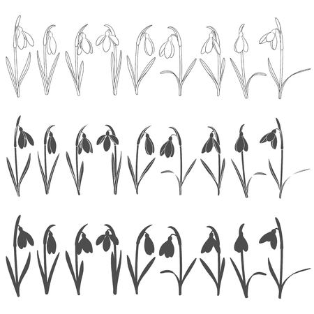 Set of black and white illustrations with snowdrops. Isolated vector objects on white background.