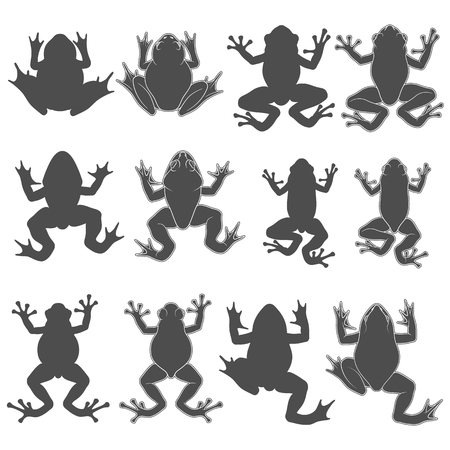 Set of black and white frogs. Isolated vector objects on white background.