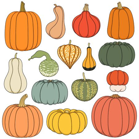 Set of color illustrations with pumpkins. Isolated objects on white background.