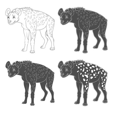 Set of black and white illustrations with spotted hyena. Isolated objects on a white background. Illustration