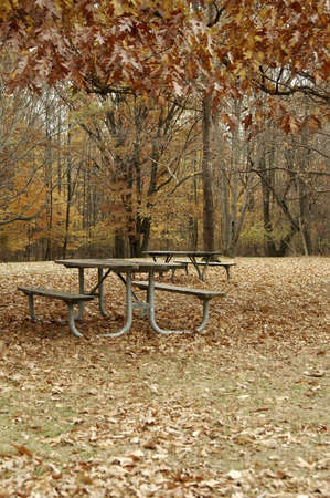 Picnic area at fall time. Stock Photo - 2191028