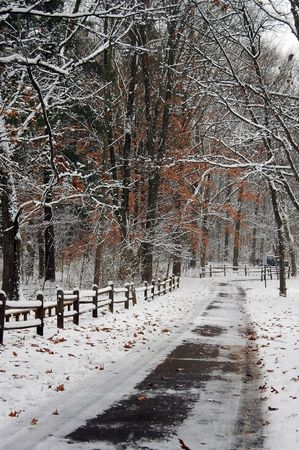 Beautiful winter scene with fence.