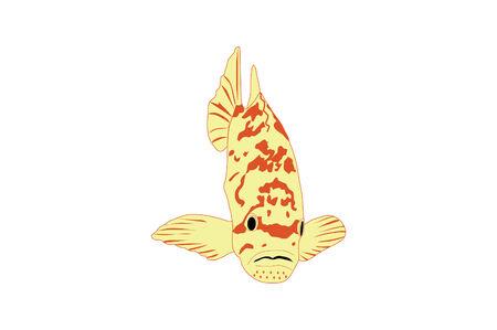 Tropical Yellow Fish Illustration