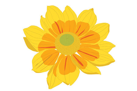 Isolated drawing of a yellow flower.
