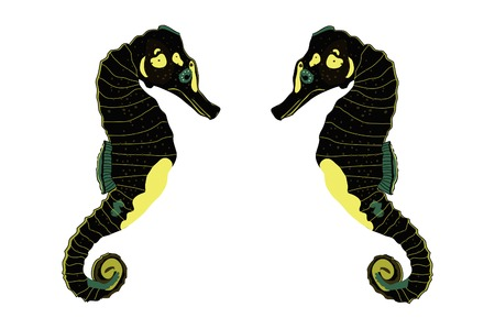 caballo de mar: Dos mar negro caballo ilustraci�n.