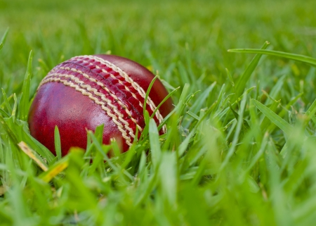 cricket game: A red cricket ball laying in green grass
