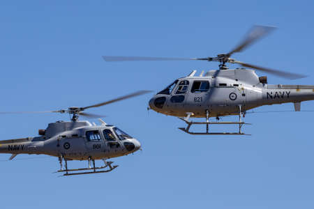 Tyabb, Australia - March 9, 2014: Royal Australian Navy Aerospatiale AS-350B Helicopters (N22-014, N22-021) flying in close formation. Éditoriale