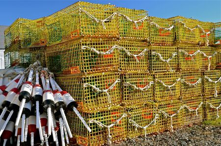 neatly stacked: Buoys and lobster traps neatly stacked on the dock