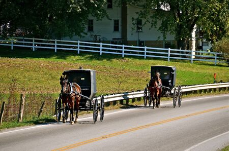amish buggy: Amish buggies traveling a public highway