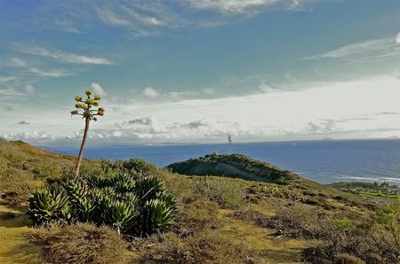 Zeezicht vanaf de top van Point Loma