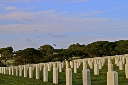 headstones: Headstones in a National Cemetery