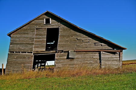 rickety: Rickety old  weathered barn in state of deterioration