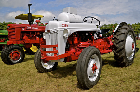 Ford Ferguson and H Farmall tractors are lined  at a tractor show