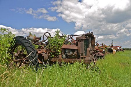 old tractors: Old tractors are lined up in a salvage and junkyard