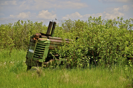 Front of an old tractor protrudes from the brush and long grass photo